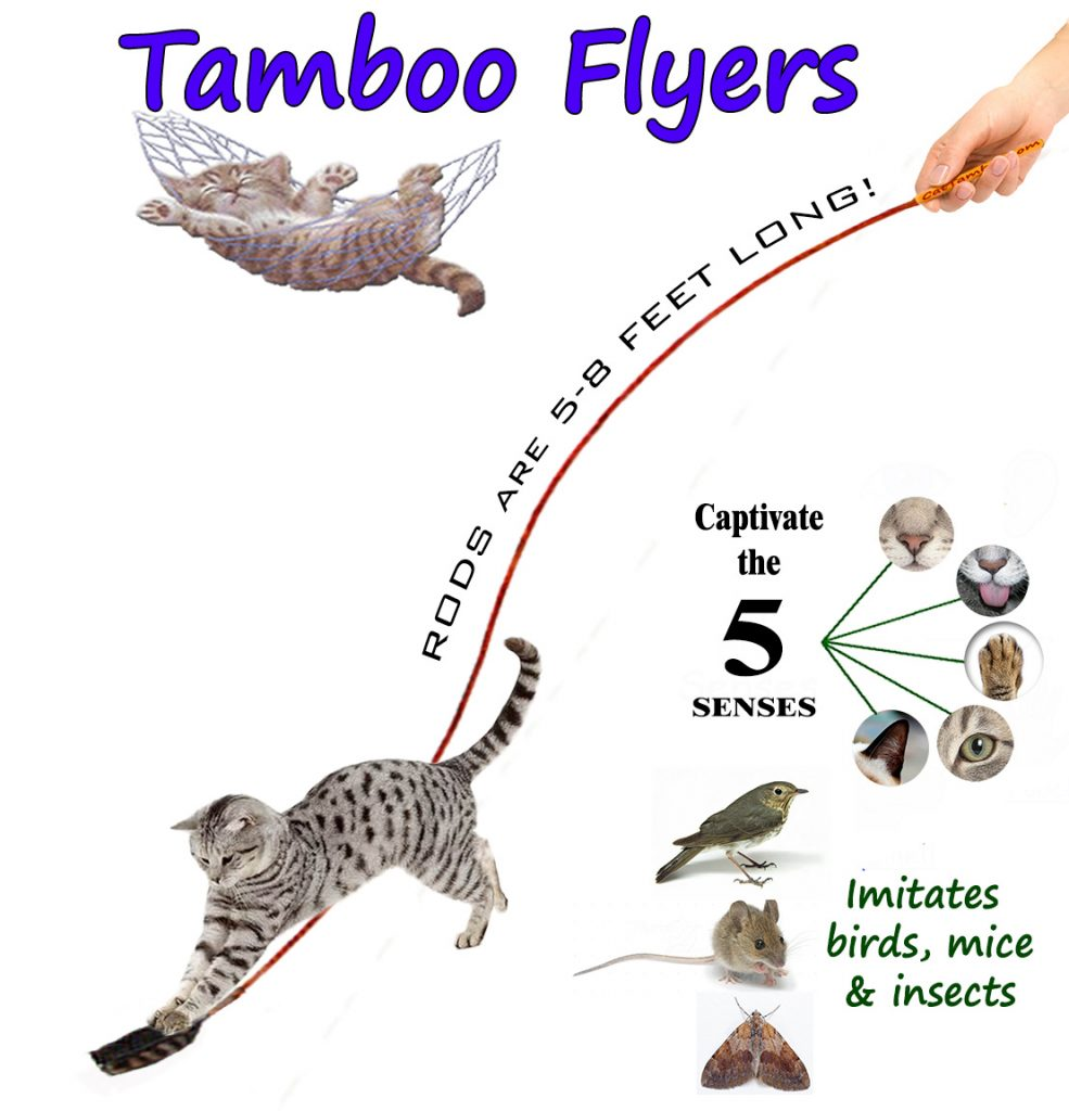 interactive cat toy comparison