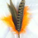 orange pheasant feather toys for cats and small dogs