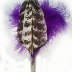 Purple Cat toys with Wild Turkey Wing by CatTamboo interactive cat toys and teaser toys for small dogs.