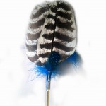 Blue Wild Turkey feather toy, an interactive cat toy and small dog teaser toy.