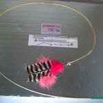 Buy cat toys Pink Wild Turkey feather toys and teaser toys.