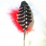 Red Wild Turkey feather toy