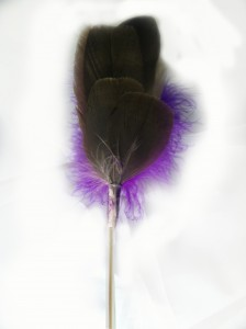 purple cat feather toy - Canada Goose