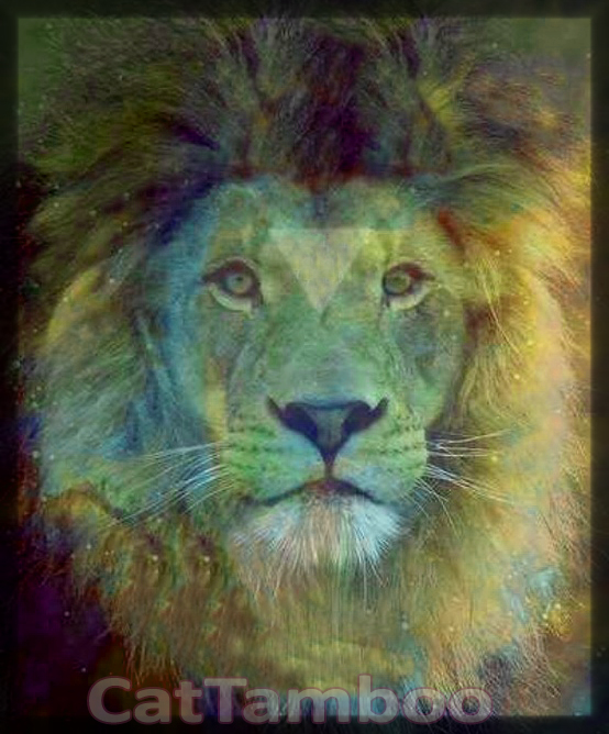 solar lion leo image