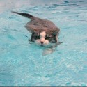 Cats Swimming
